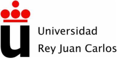 Curso Superior Universitario: Derecho de la Competencia y Publicidad.
