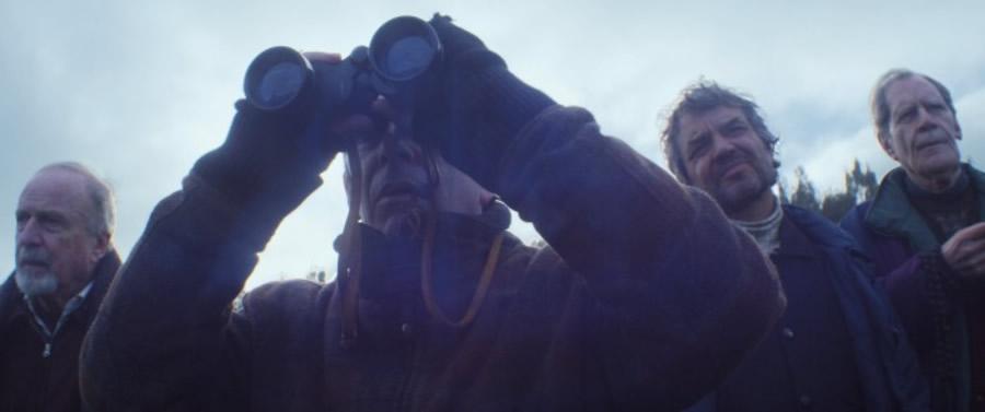 Una manada de osos de la 65 Berlinale para el cine iberoamericano